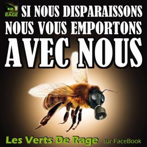 abeilles 002