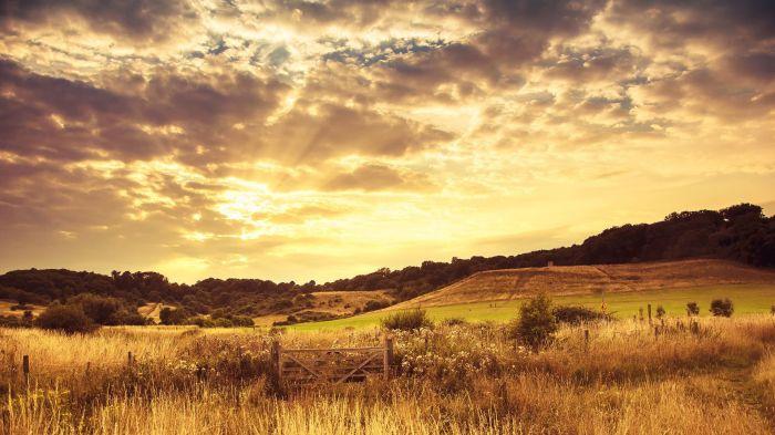 Paysage - Prairie - Landscape - Wallpaper - 285