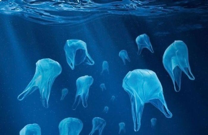 Sac plastique - Mer