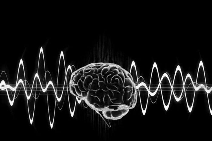 Cerveau - Ondes